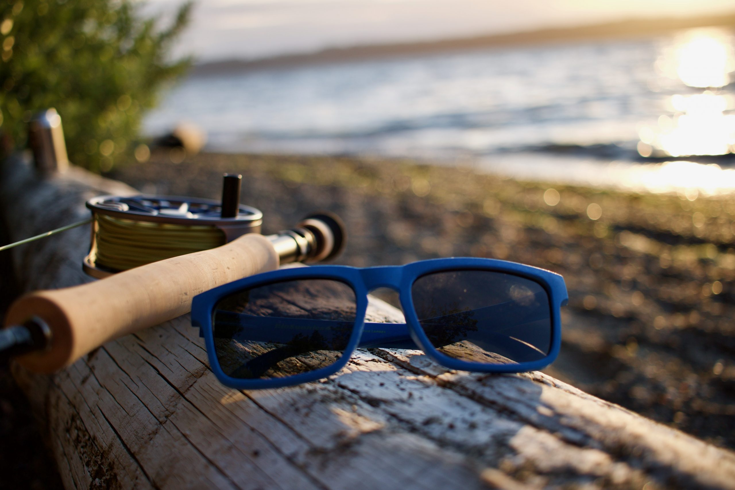 Blue sunglasses folded up, laying on a beach log in front of a fly fishing rod