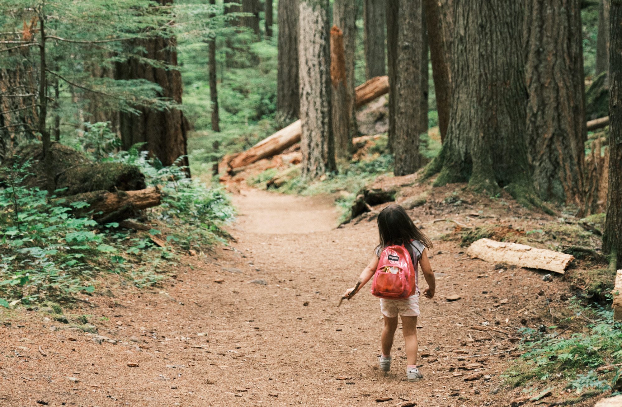A little girl wearing a pink backpack walking along a trail